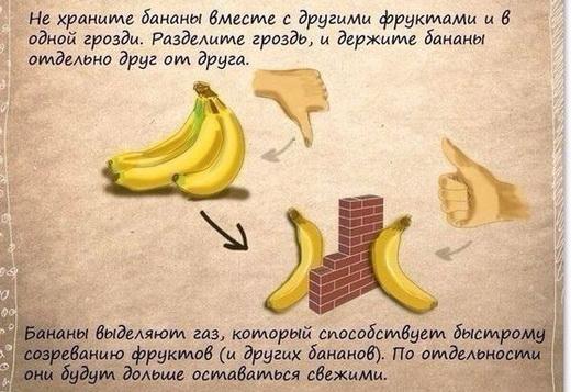Хранение бананов дома