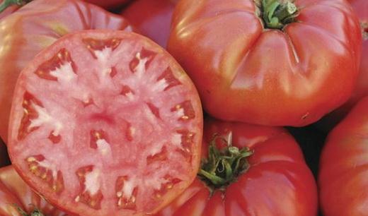 Описание сорта розового томата Пинк